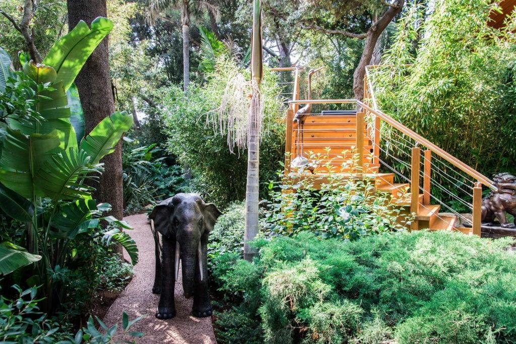 création Jardin exotique Aix en Provence, Marseille, Bouches-du-Rhône, 13