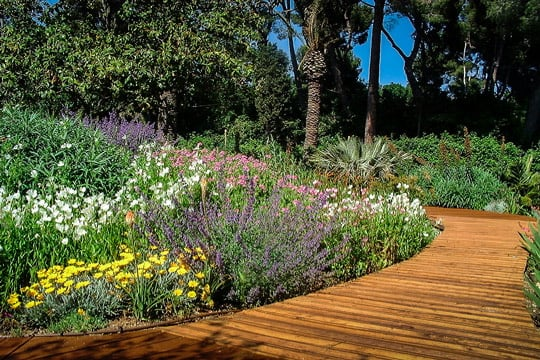 Creation Jardin Mediterraneen Aix En Provence Marseille 13 84 04