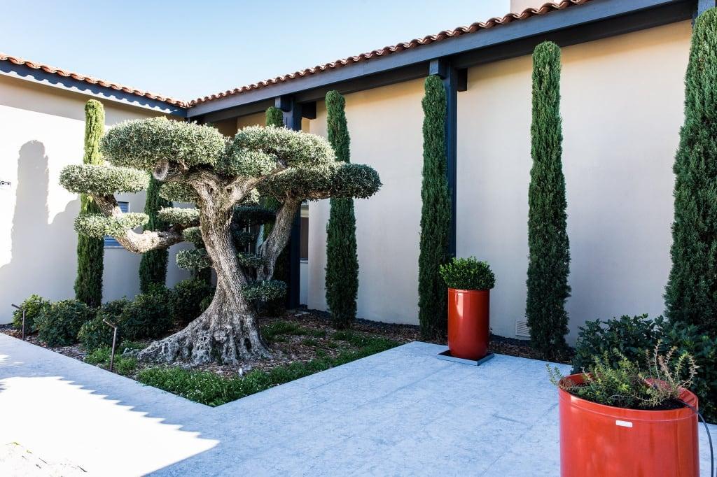 Un jardin minéral méditerranéen
