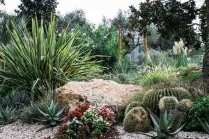 Jardin méditerranéen Bouches-du-Rhône (13), Vaucluse (84), Alpes de Haute Provence (04)