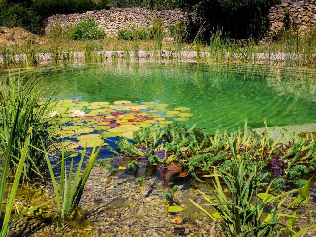 piscine avec procédé naturel de l'eau Aix en Provence, Marseille, Bouches-du-Rhône, 13