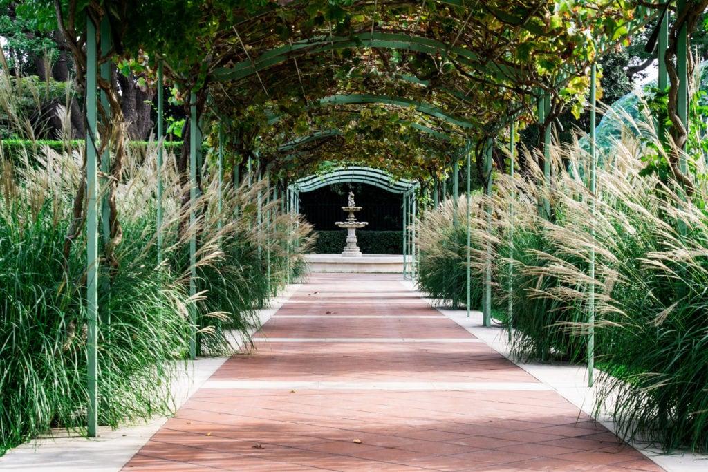 Aménagement jardin méditerranéen Bouches-du-Rhône, 13, Vaucluse, 84, Alpes de Haute Provence, 04