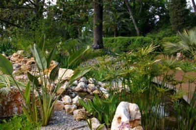 Création d'un jardin méditerranéen avec vivaces, massifs et rochers