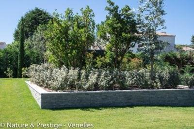 Aménagement d'un jardin méditerranéen dans le Luberon