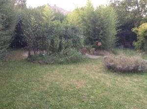 Création d'une piscine bois Blewood à Bouc Bel Air