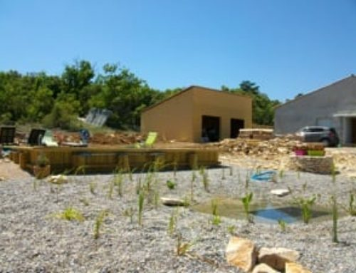 Réalisation d'une piscine naturelle à Vinon sur Verdon