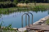 piscine naturelle au coeur de la Provence réalisée Nature & Prestige