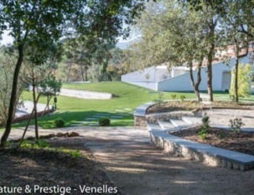 Environnement contemporain pour villa moderne