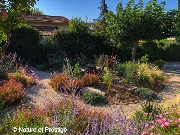 petit jardin méditerranéen à Aix en Provence avec des plantes vivaces